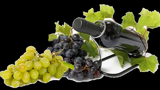 bottiglia-vino-grappolo